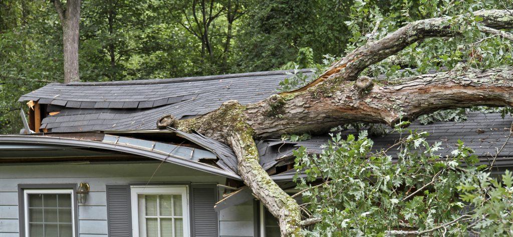 Gainesville Storm Damage Repair